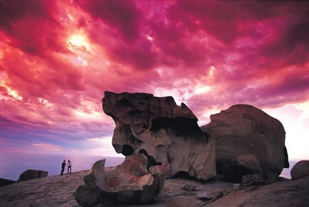 Kangaroo Island Adventure Tour 2 day/1 night - Mount Gambier Accommodation