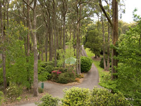 Mount Lofty Botanic Garden - Mount Gambier Accommodation