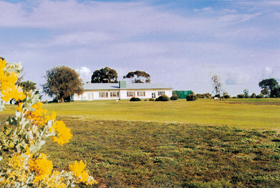 Lucindale Country Club - Mount Gambier Accommodation