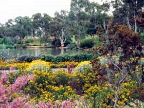 Wittunga Botanic Garden - Mount Gambier Accommodation