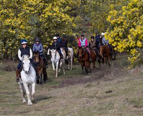 Burnelee Excursions on Horseback - Mount Gambier Accommodation