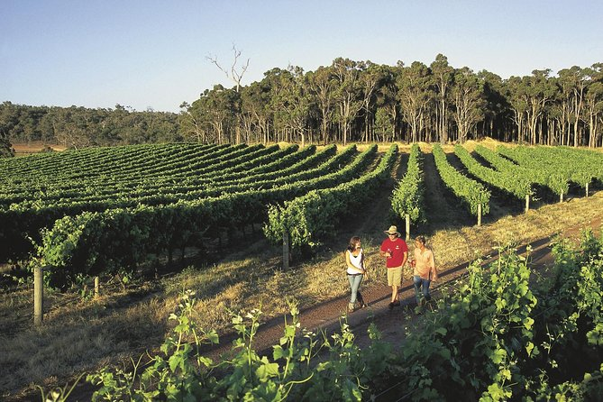 Margaret River Caves Wine and Cape Leeuwin Lighthouse Tour from Perth - Mount Gambier Accommodation
