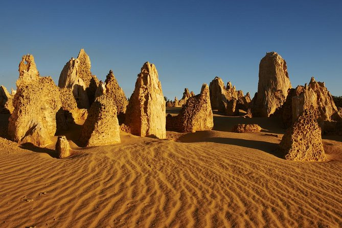 Pinnacles Day Trip from Perth Including Yanchep National Park - Mount Gambier Accommodation
