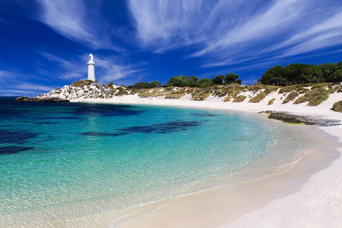 Rottnest Island Grand Tour Including Lunch and Historical Train Ride - Mount Gambier Accommodation