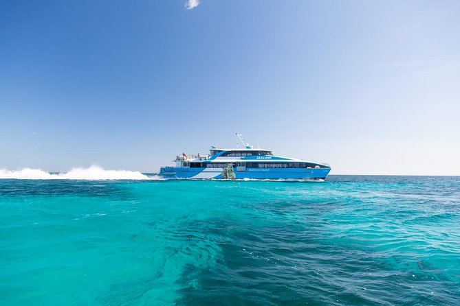 Fremantle to Rottnest Island Roundtrip Ferry Ticket - Mount Gambier Accommodation