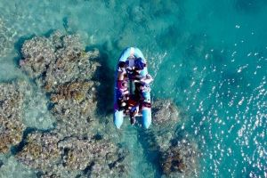 Glass-bottom boat tour with Whitehaven Beach - Mount Gambier Accommodation