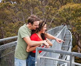 Valley of the Giants Tree Top Walk - Mount Gambier Accommodation