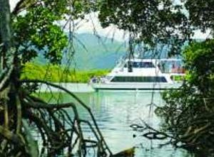 Cairns Harbour Cruises - Mount Gambier Accommodation