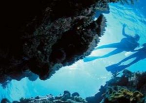Deep Sea Divers Den - Mount Gambier Accommodation