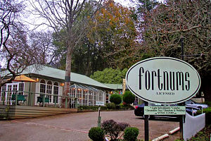 Fortnums Restaurant - Mount Gambier Accommodation