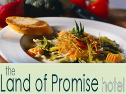 Land of Promise Hotel - Mount Gambier Accommodation