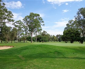 Singleton Golf Club - Mount Gambier Accommodation