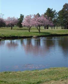 RMC Golf Club - Mount Gambier Accommodation