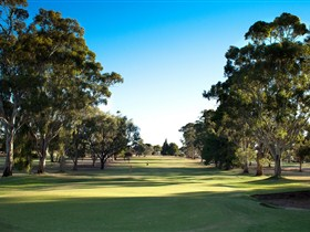 Loxton Golf Club - Mount Gambier Accommodation