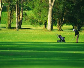 Foster Golf Club - Mount Gambier Accommodation