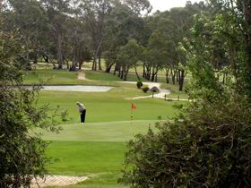 Mount Barker-Hahndorf Golf Club - Mount Gambier Accommodation