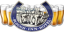 Plough Inn Hotel - Mount Gambier Accommodation
