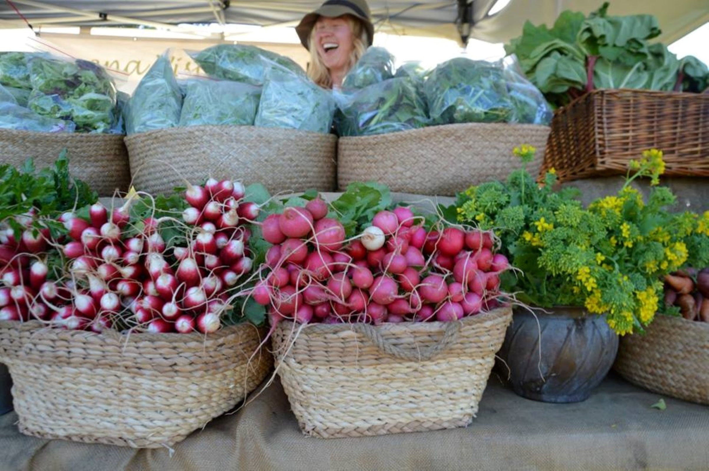 Berry Farmers' Market - Mount Gambier Accommodation