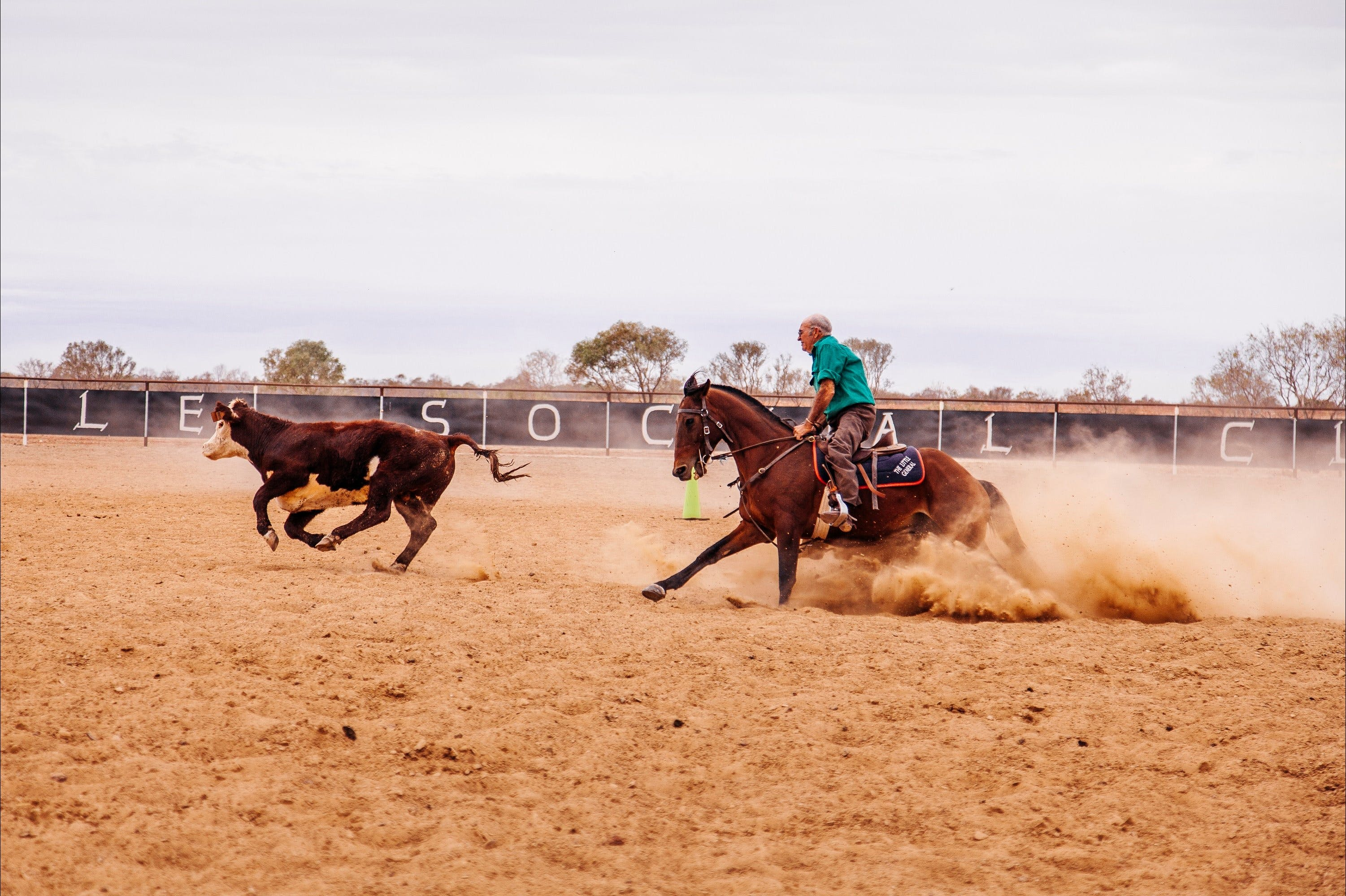 Birdsville Campdraft  Rodeo and Bronco Branding - Mount Gambier Accommodation