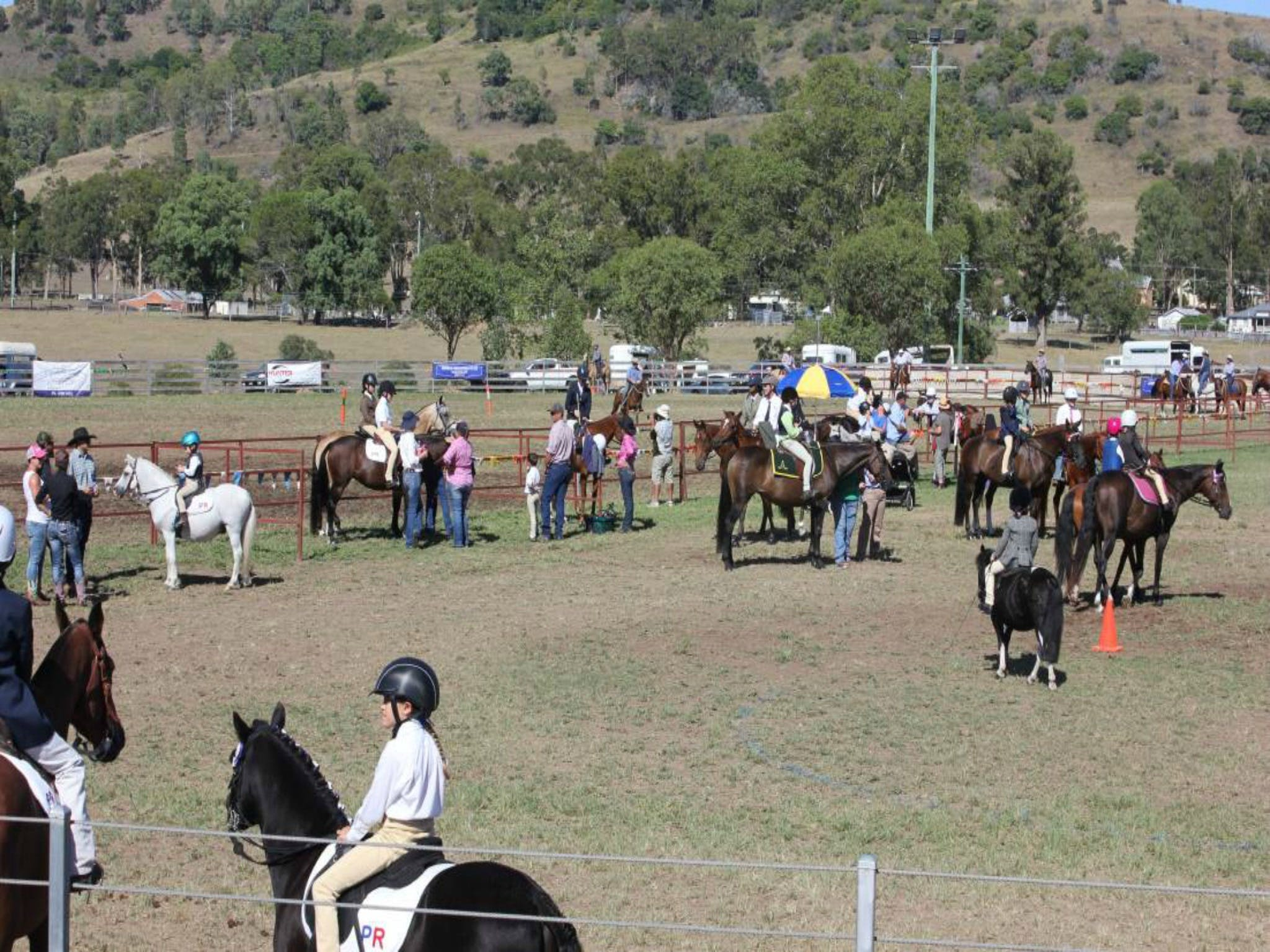 Gresford Agricultural Show - Mount Gambier Accommodation