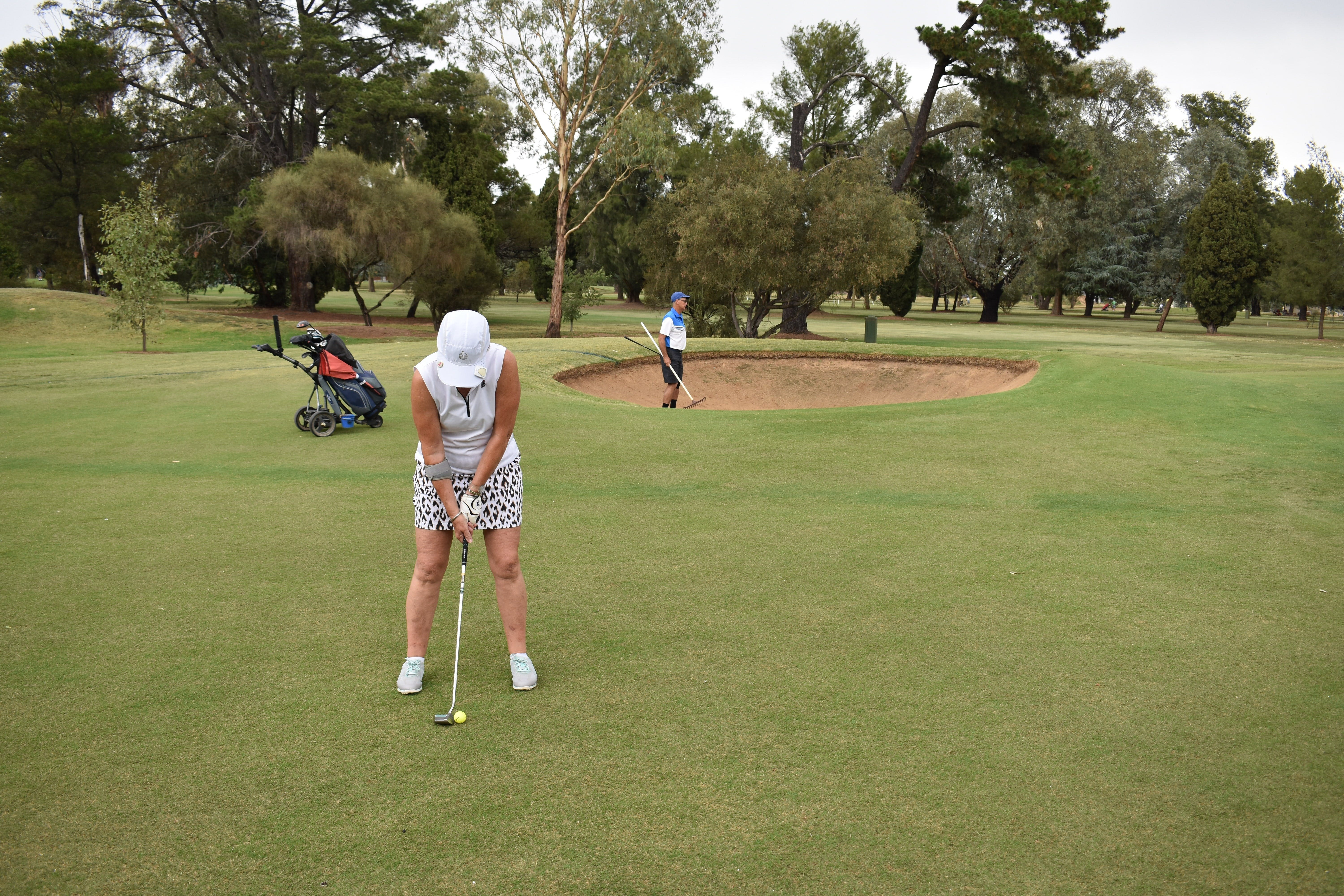 Howlong Golden Shoe Nine Hole Golf Tournament - Mount Gambier Accommodation