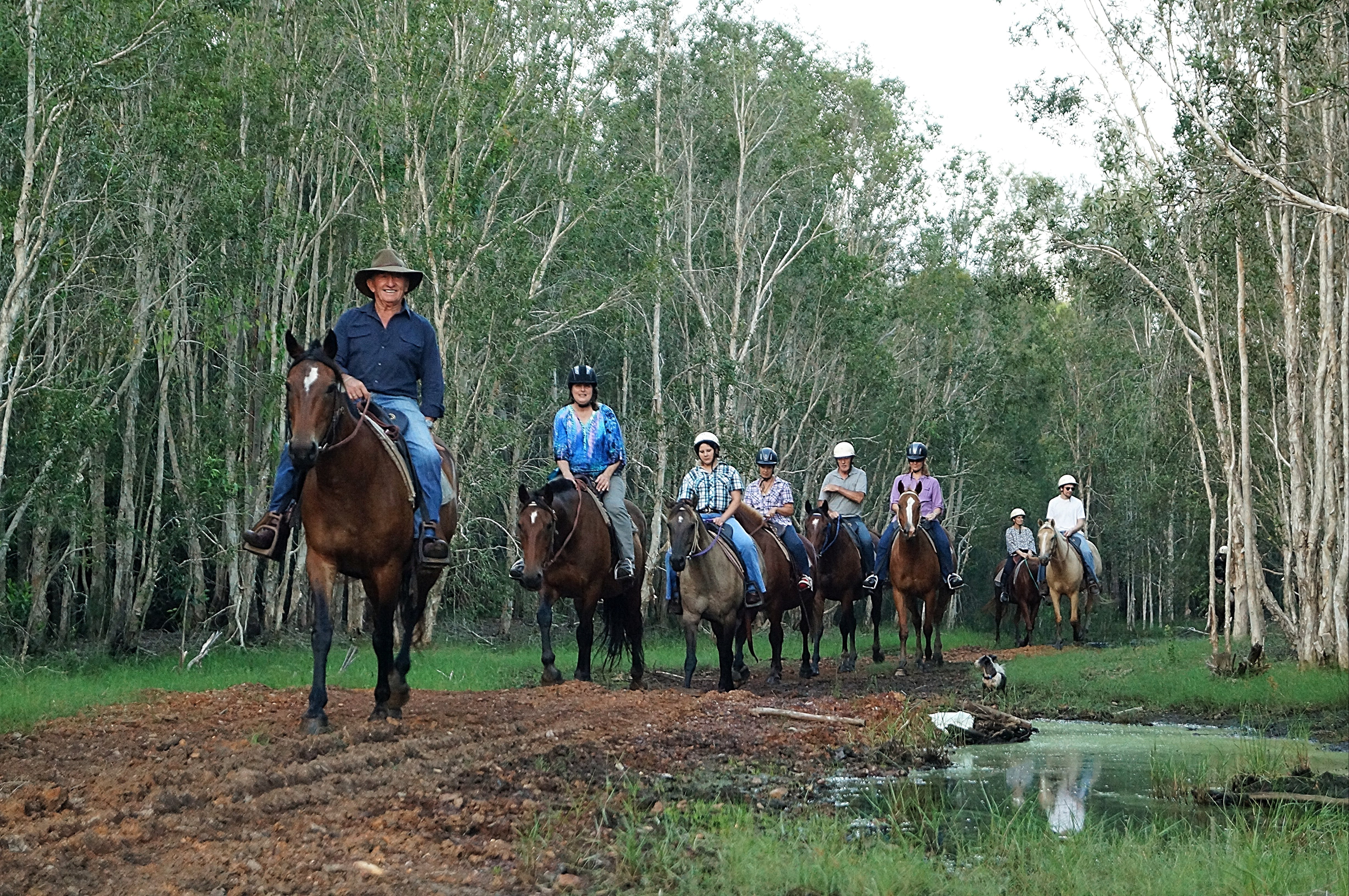 Night Horse Ride and Dinner - Mount Gambier Accommodation