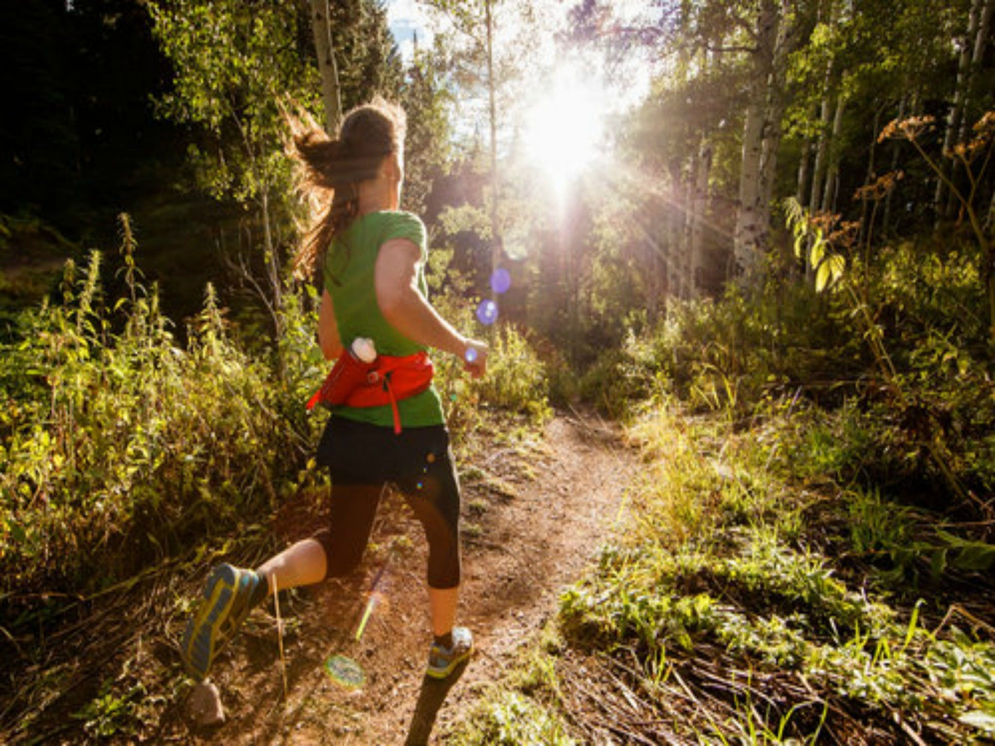 Run Dungog - Mount Gambier Accommodation