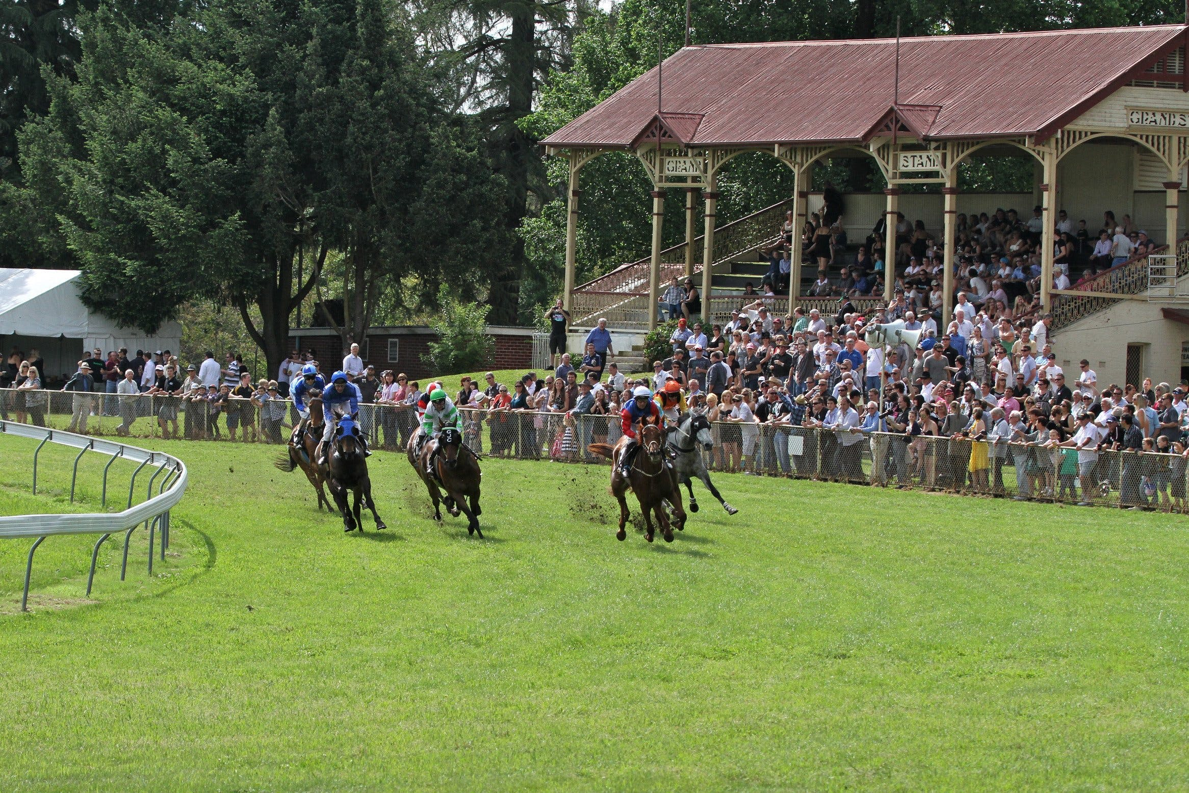 Tumut Derby Day - Mount Gambier Accommodation