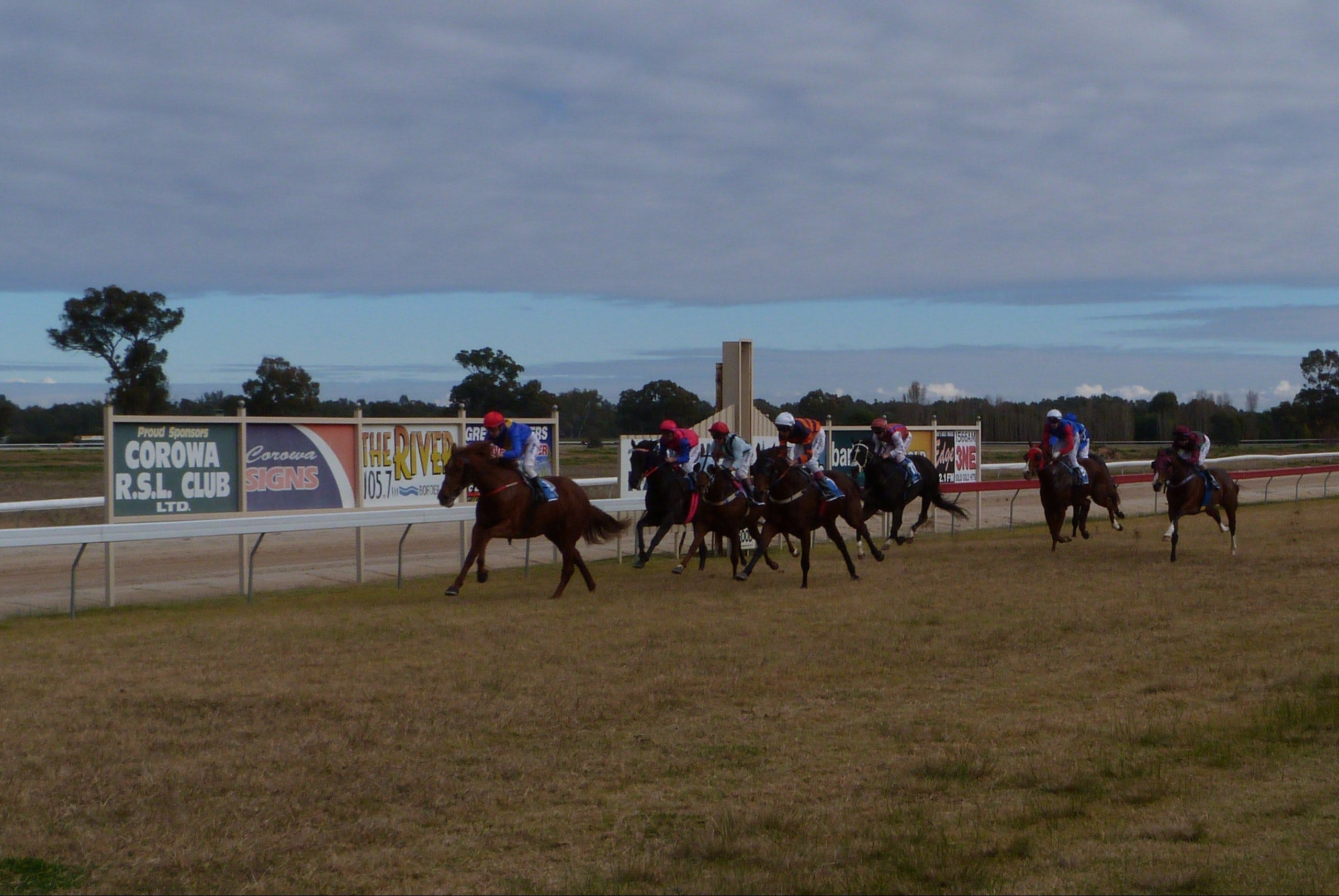 Corowa Horseraces - Mount Gambier Accommodation