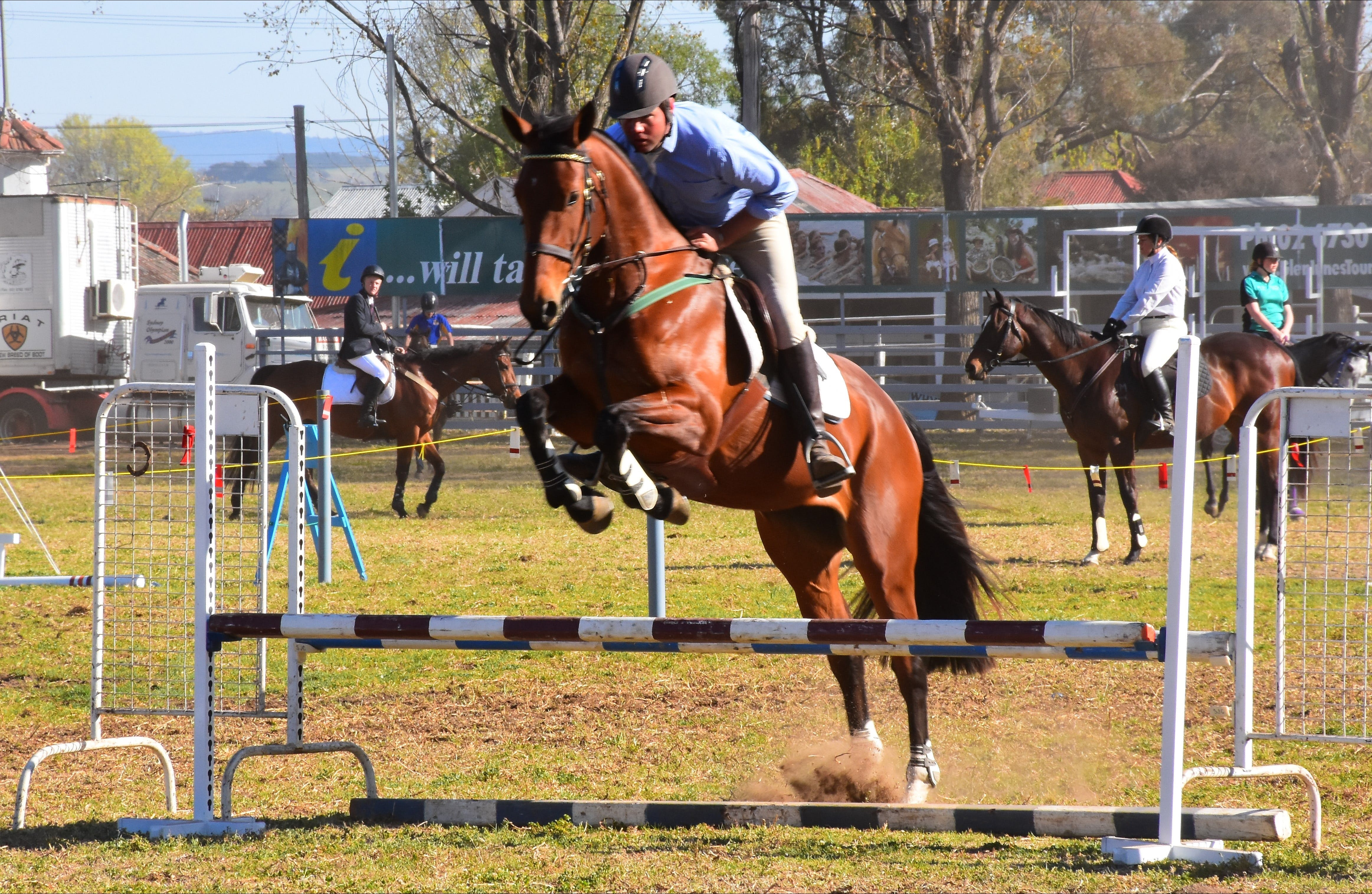 Glen Innes Pastoral and Agricultural Show - Mount Gambier Accommodation