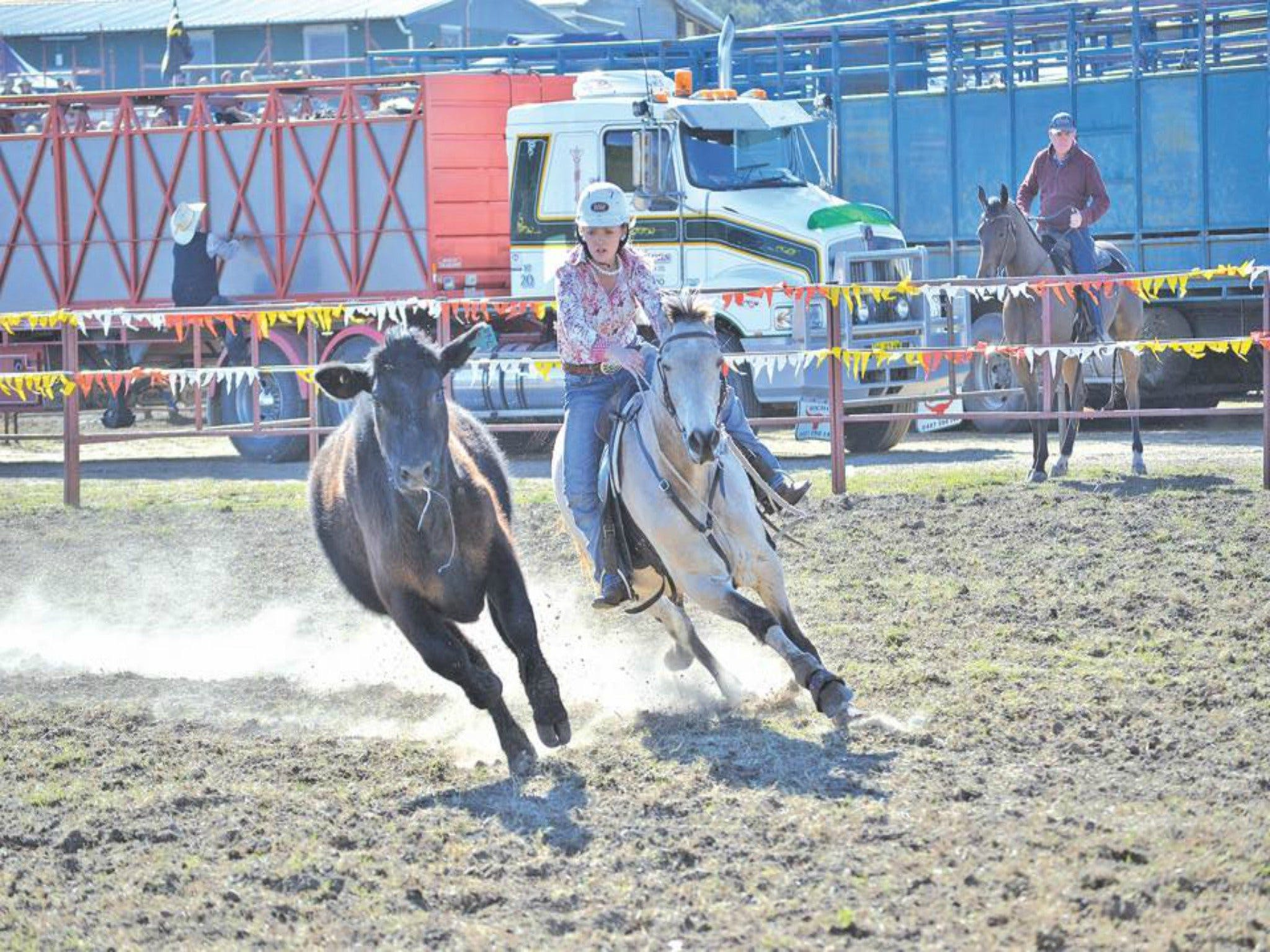 Gresford  Campdraft and Rodeo - Mount Gambier Accommodation