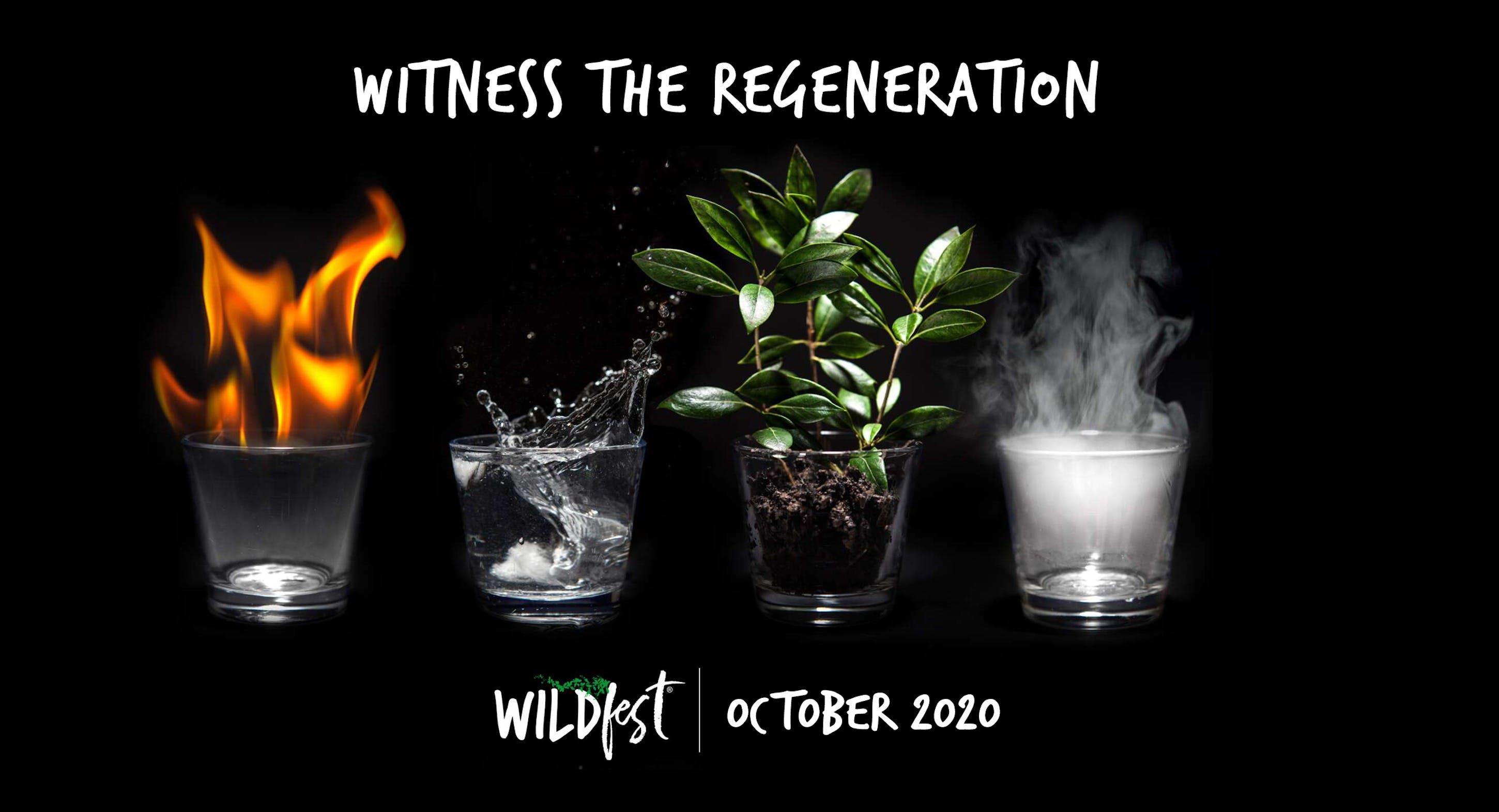 Wildfest - Annual Festival - Mount Gambier Accommodation