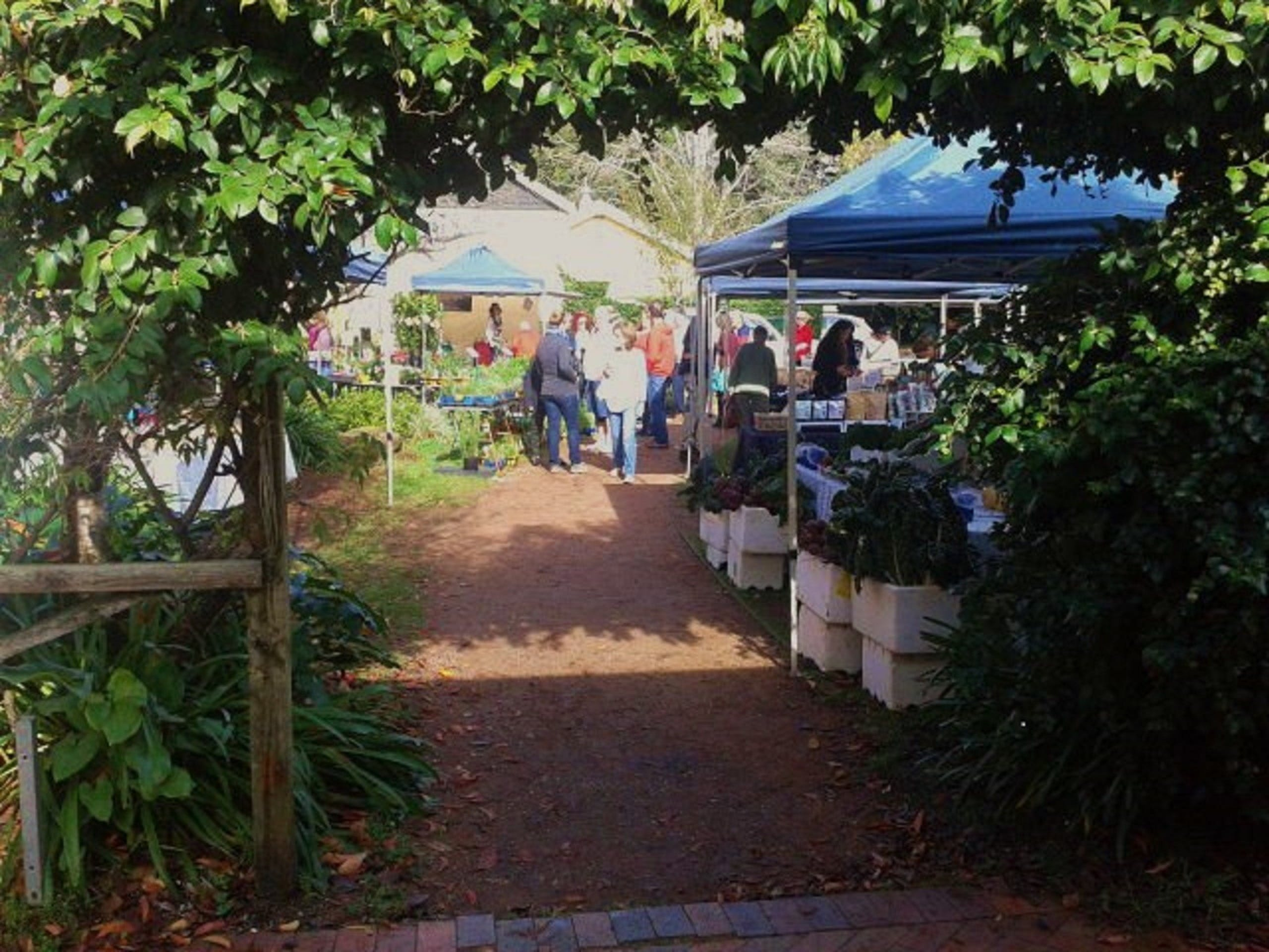 Berry Produce Market - Mount Gambier Accommodation