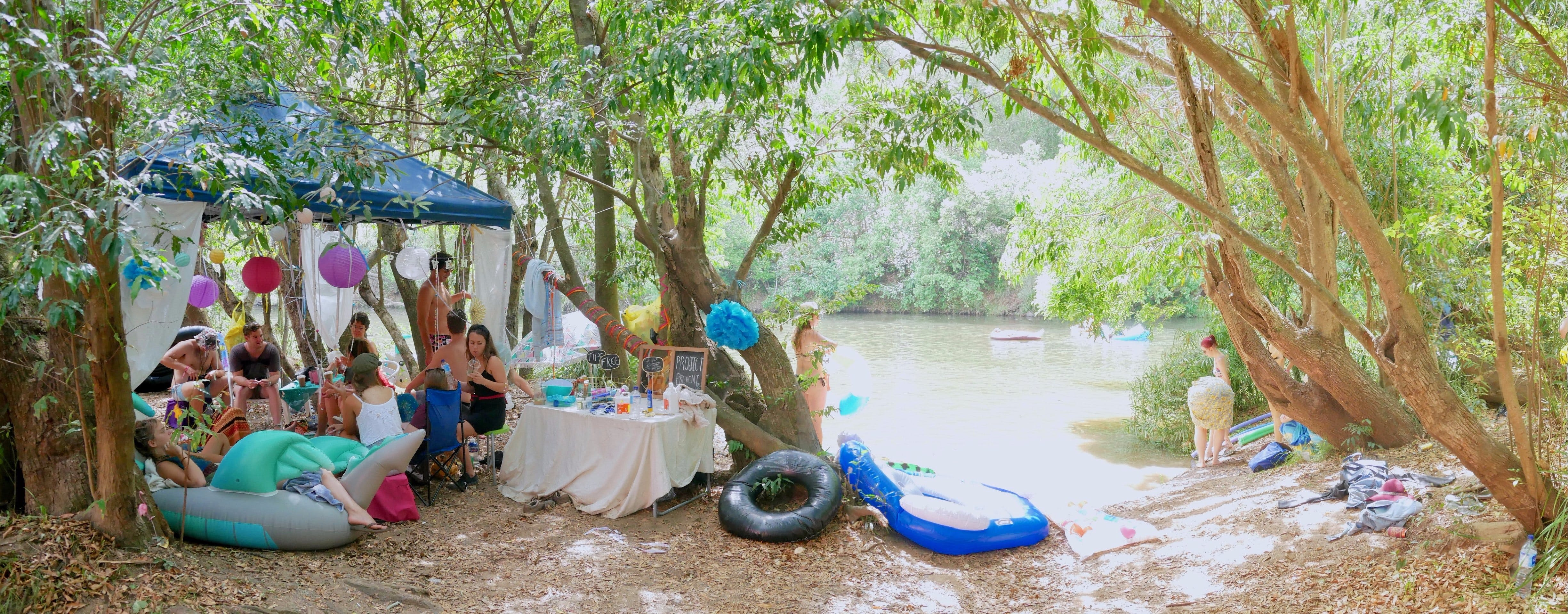 Jungle Love Festival - Mount Gambier Accommodation