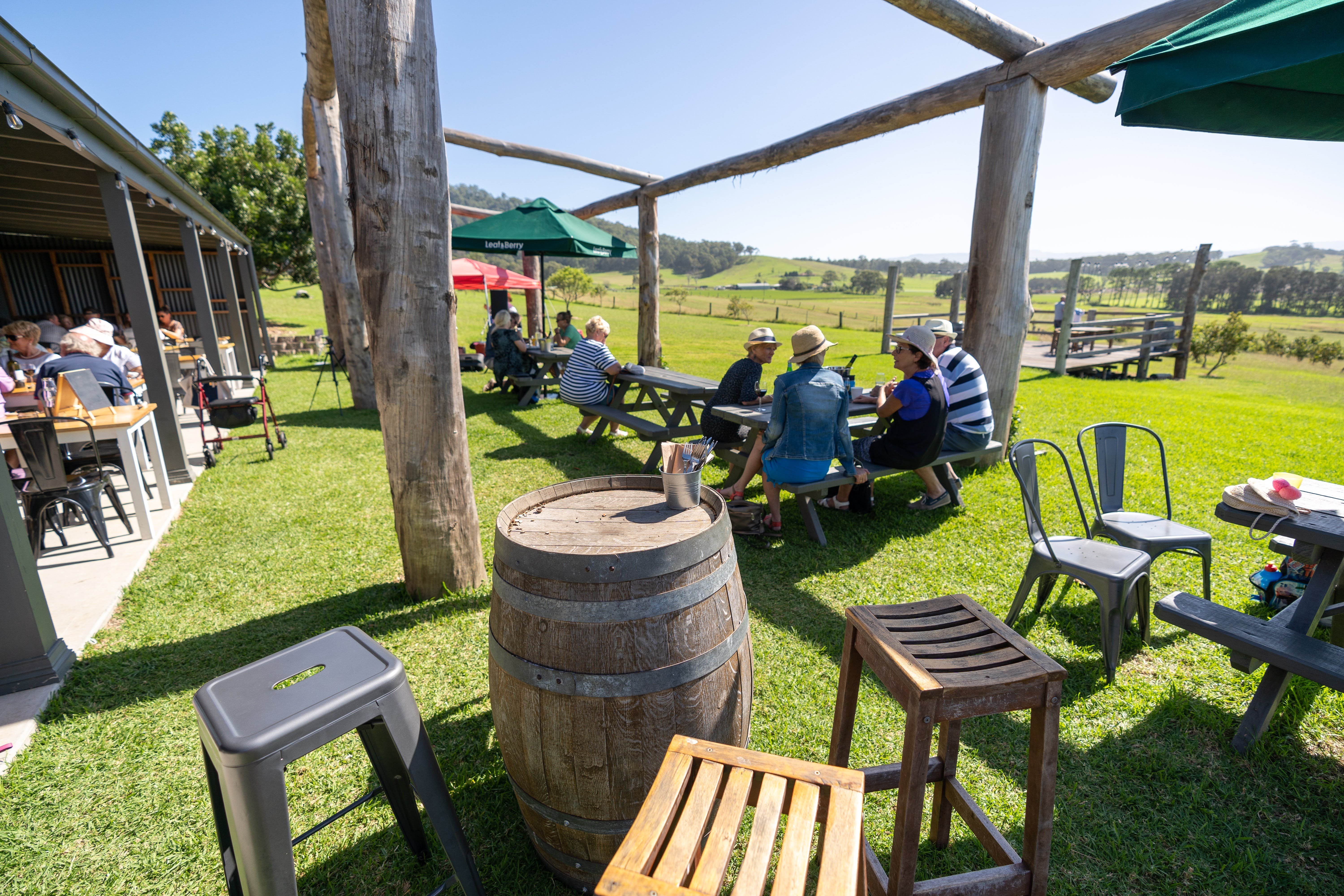Live Music Sundays at Mountain Ridge Wines - Mount Gambier Accommodation