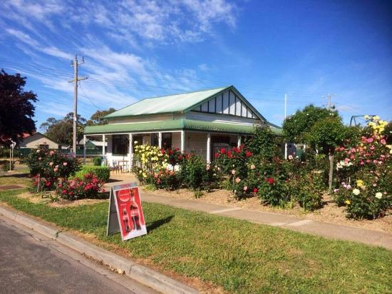 Rose Cafe - Mount Gambier Accommodation