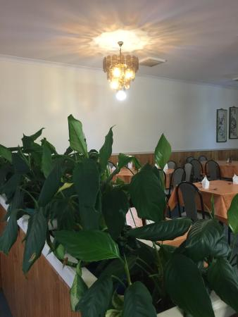 Emerald Lantern Chinese Restaurant - Mount Gambier Accommodation