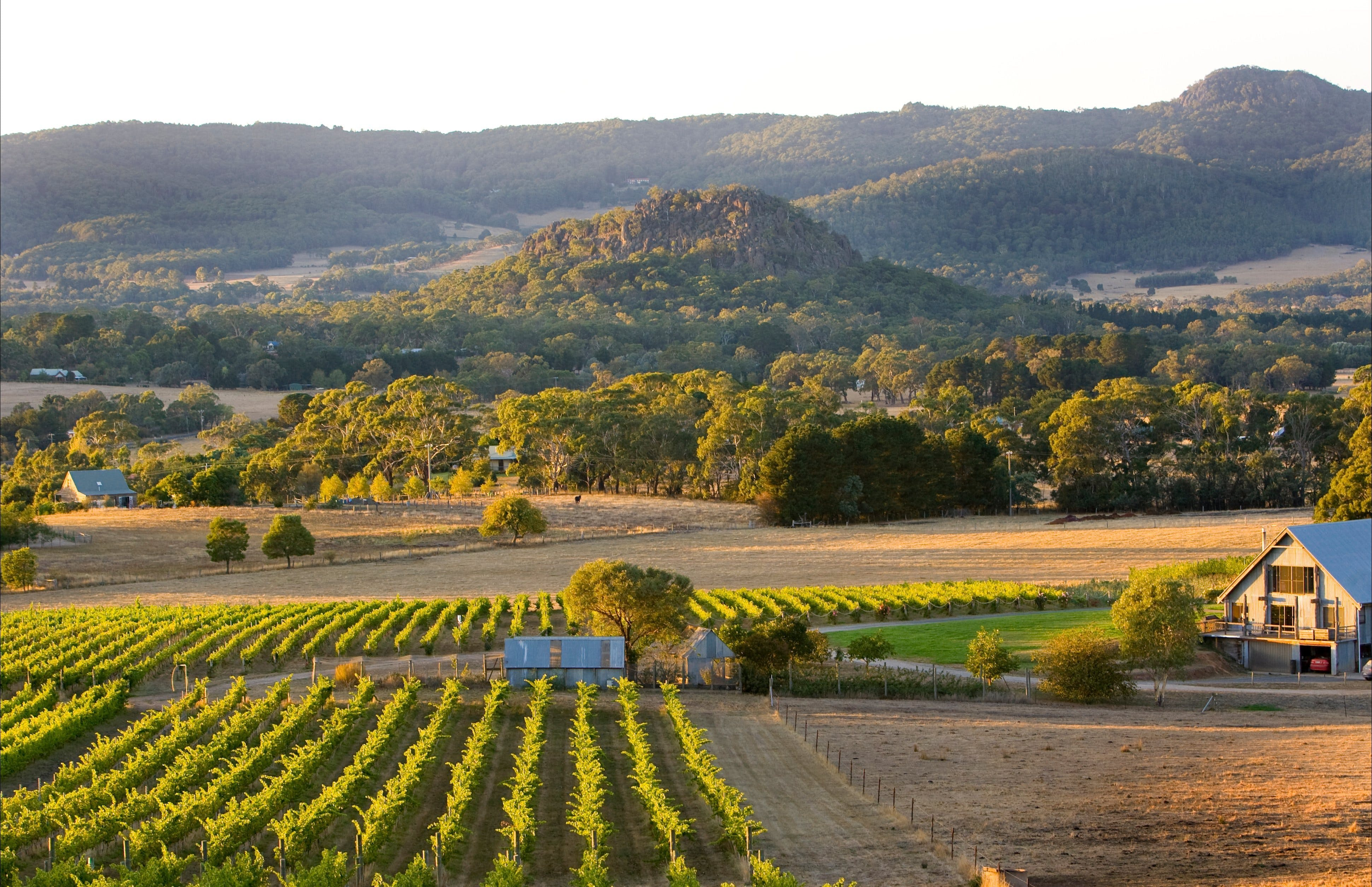 Hanging Rock Winery - Mount Gambier Accommodation