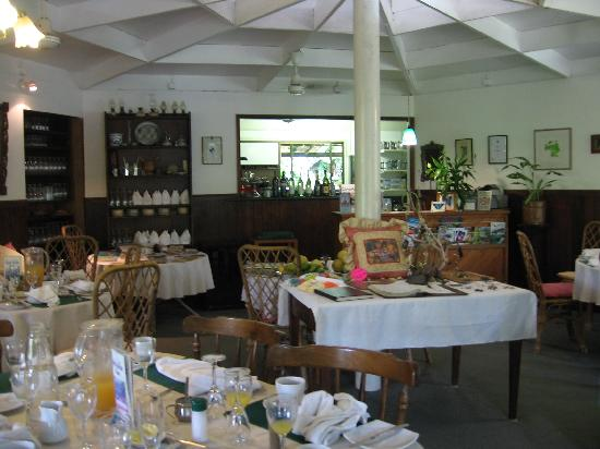 Daintree Tea House Restaurant - Mount Gambier Accommodation