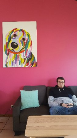 Fat Beagle Coffee Shop - Mount Gambier Accommodation