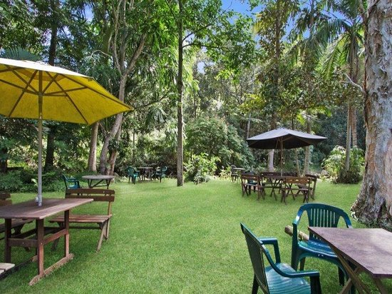 Rainforest - Mount Gambier Accommodation