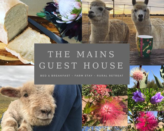 The Mains Guest House - Mount Gambier Accommodation