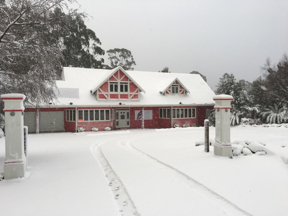 Cradle forest inn - Mount Gambier Accommodation