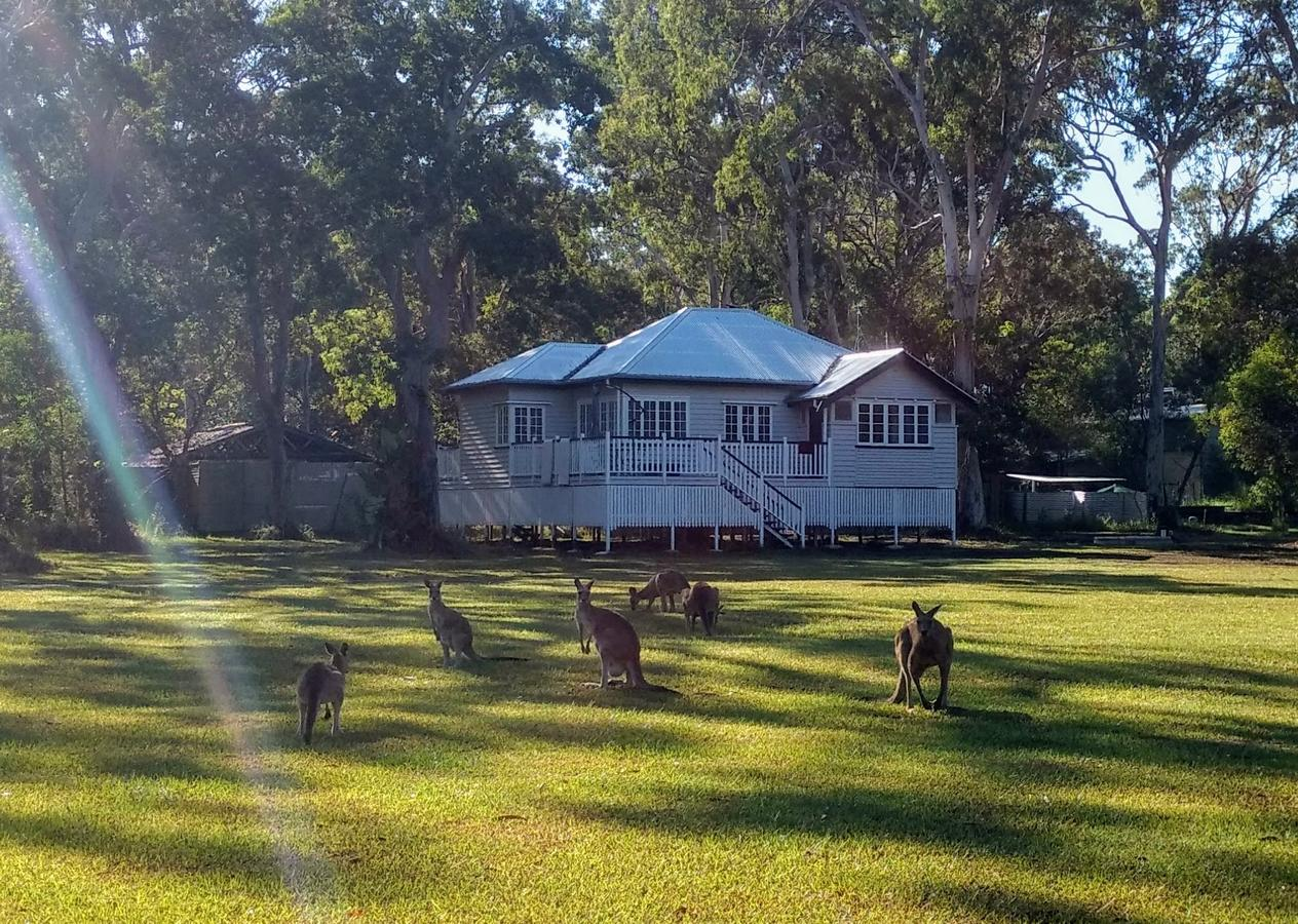 Lake Weyba Noosa Lodge  Kangaroos - Mount Gambier Accommodation